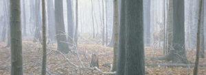 bateman deer painting